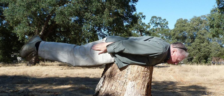 """Ček, jel sam trebao guglati """"planking"""" ili """"acting""""?"""