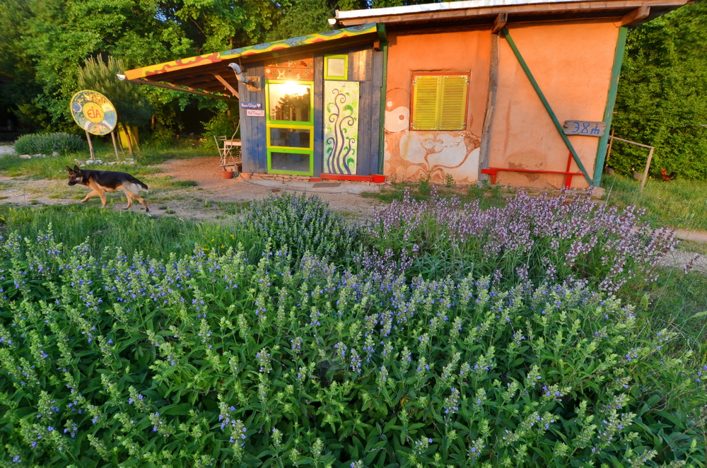 ecovillage in Croatia, eco-villages, intentional community, community, cob, spiritual community, permaculture, original houses