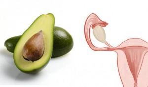 avokado-maternica