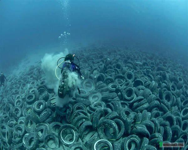 gume na dnu mora